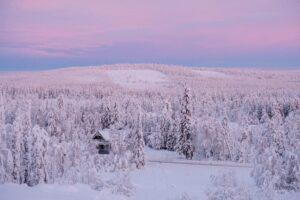 Bild på snötäckt landskap i Norrbotten
